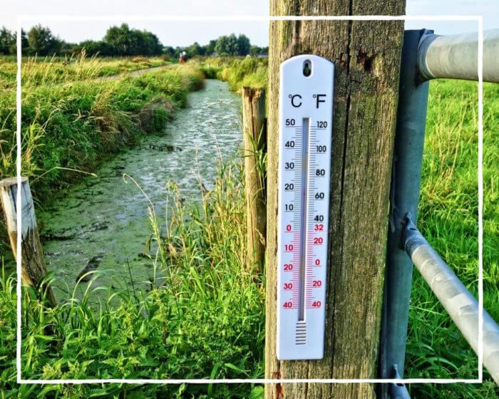 Какая погода в Польше, климат страны